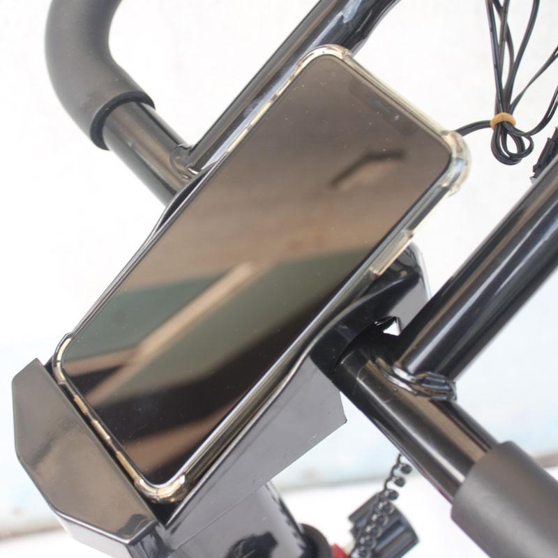 hình ảnh Xe đạp tập thể dục trong nhà Hayashi Hbike 3003